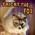 Tricky The Fox